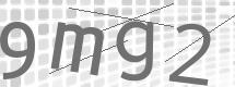 图形验证码